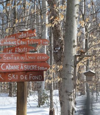 Chemins de balade - Canada