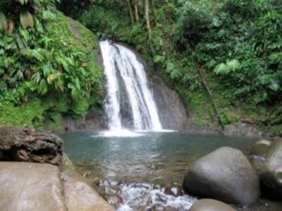 Cascade aux Ecrevisses - Guadeloupe