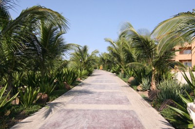 Jardins hôtel Riu Garopa