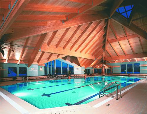 Une piscine de taille semi-olympique... avec vue sur le lac