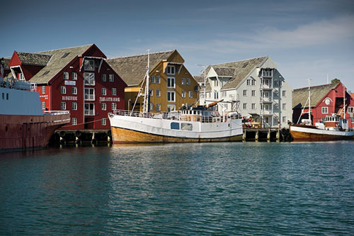 Tromso-2011-TIFF-12-of-193-142598_800
