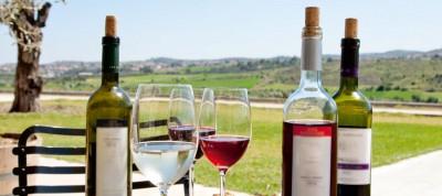 vins chypre