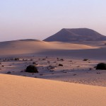 Dunes de Corralejo 3